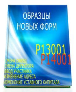 Формы Р13001 и Р14001 образцы заполнения