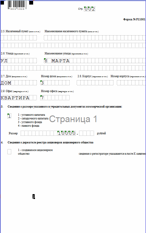 форма р11001 образец стр. 2