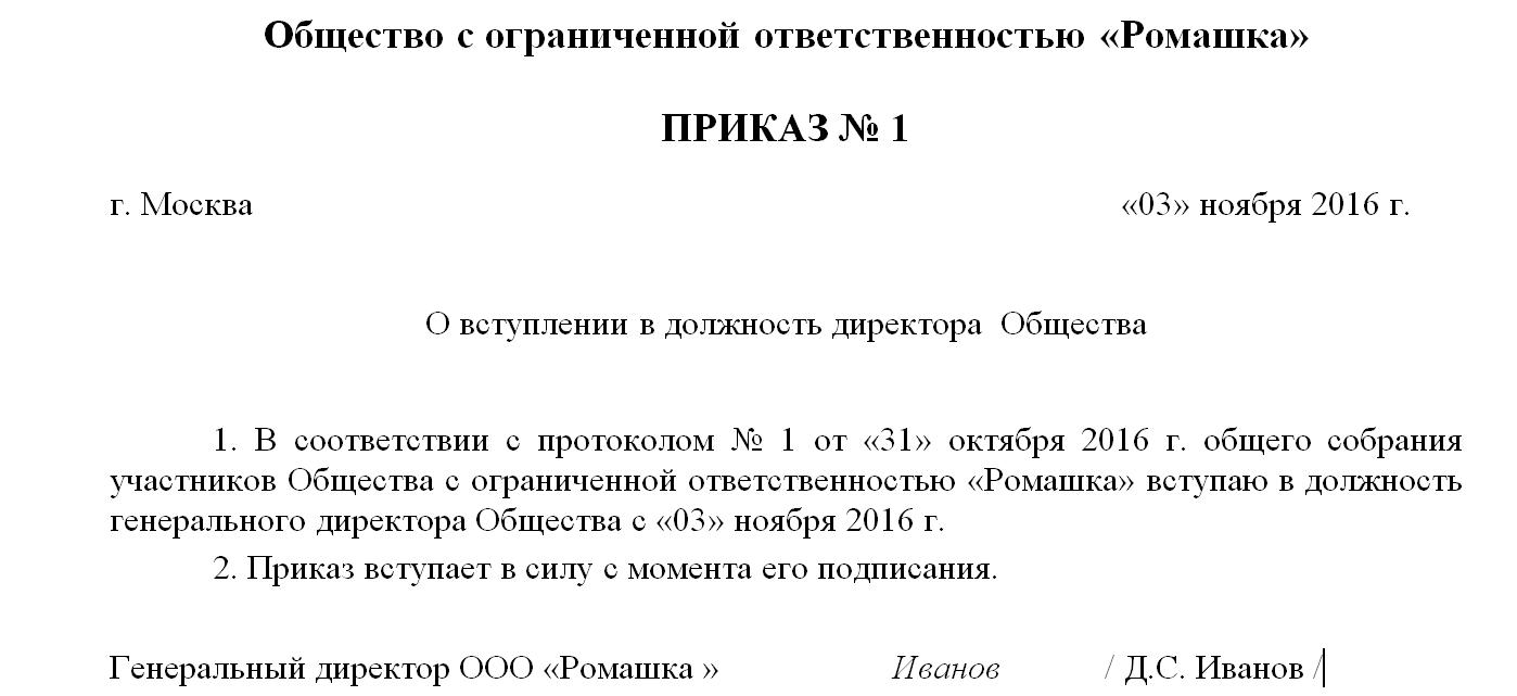Приказ о назначении генерального директора ооо: образец, реквизиты.